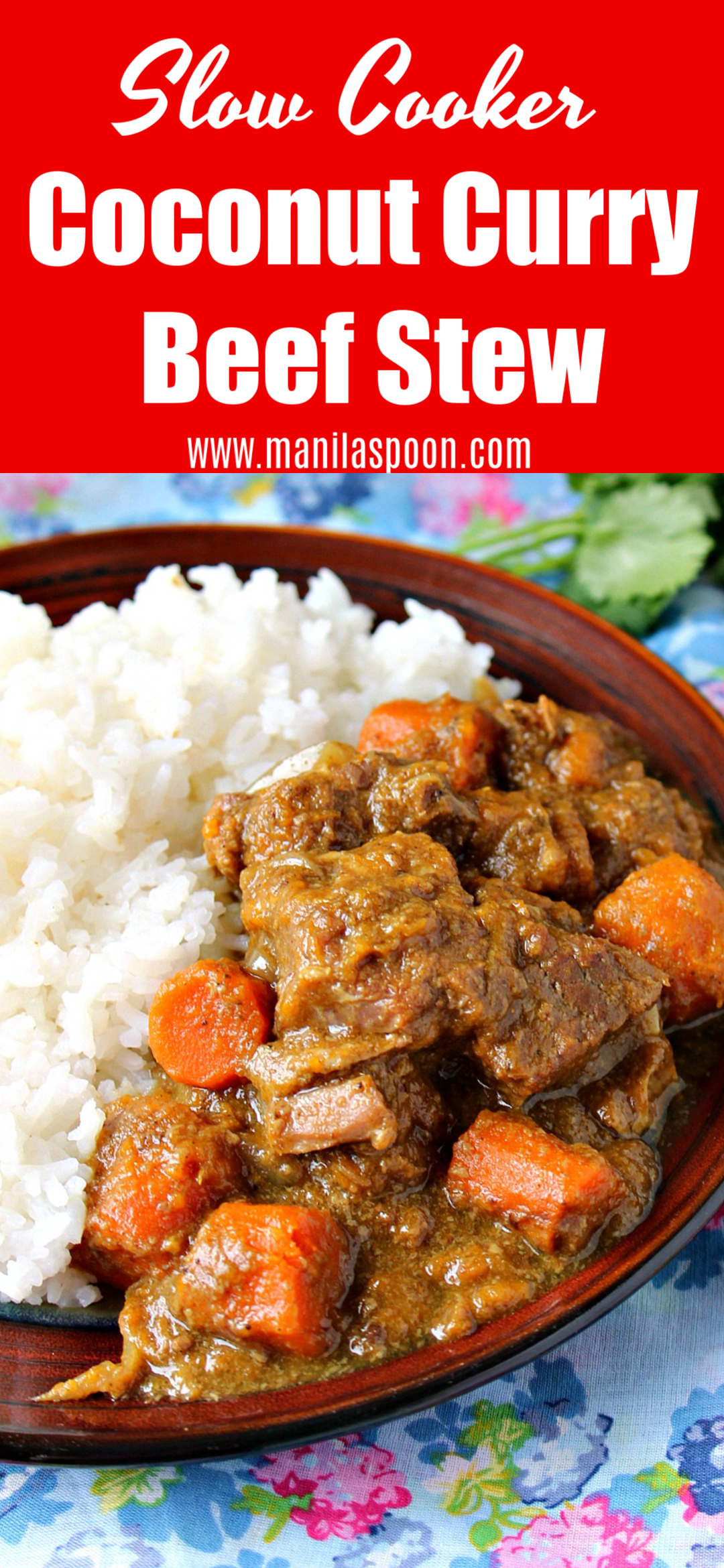 Coconut Curry Beef Stew